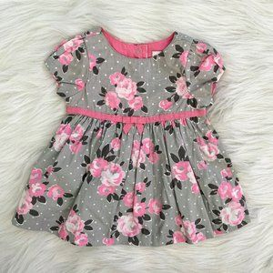 Gymboree Cabbage Rose Polka Dot Dress 0/3M